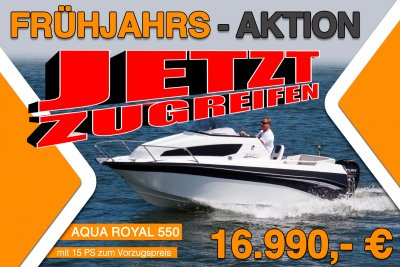 Aqua Royal 550 cruiser + 15PS